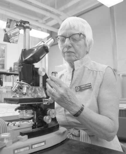 Frances Lombard studying a fungus using a light microscope.