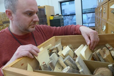 FPL botanist Alex Wiedenhoeft examines samples in the Lab's wood collection.